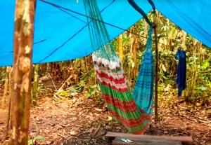 garimpeiro-acampa