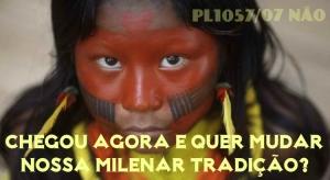 PL1057-menina-kayapo-indigena-750x410